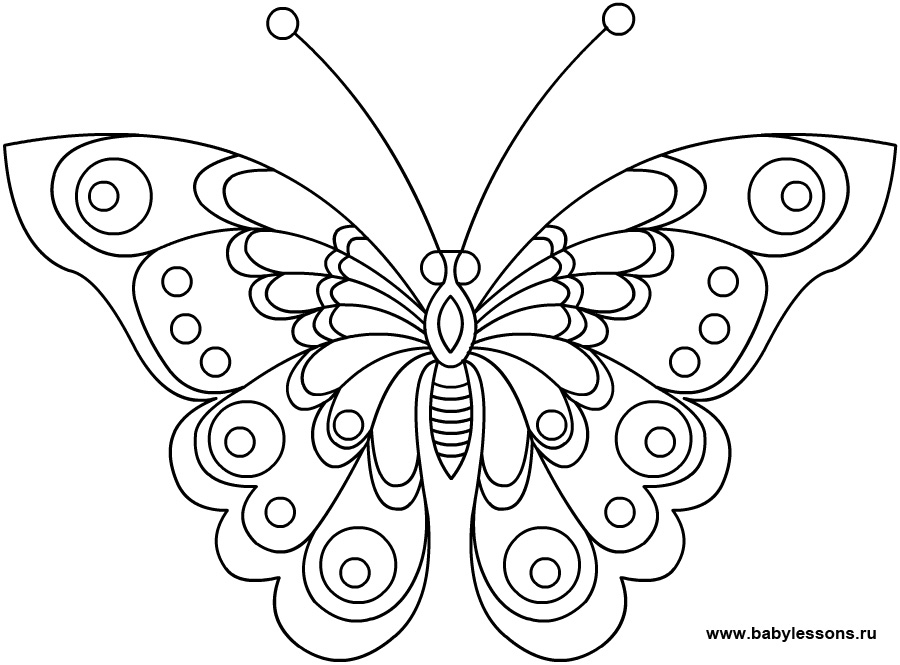 Бабочка раскраска - 254
