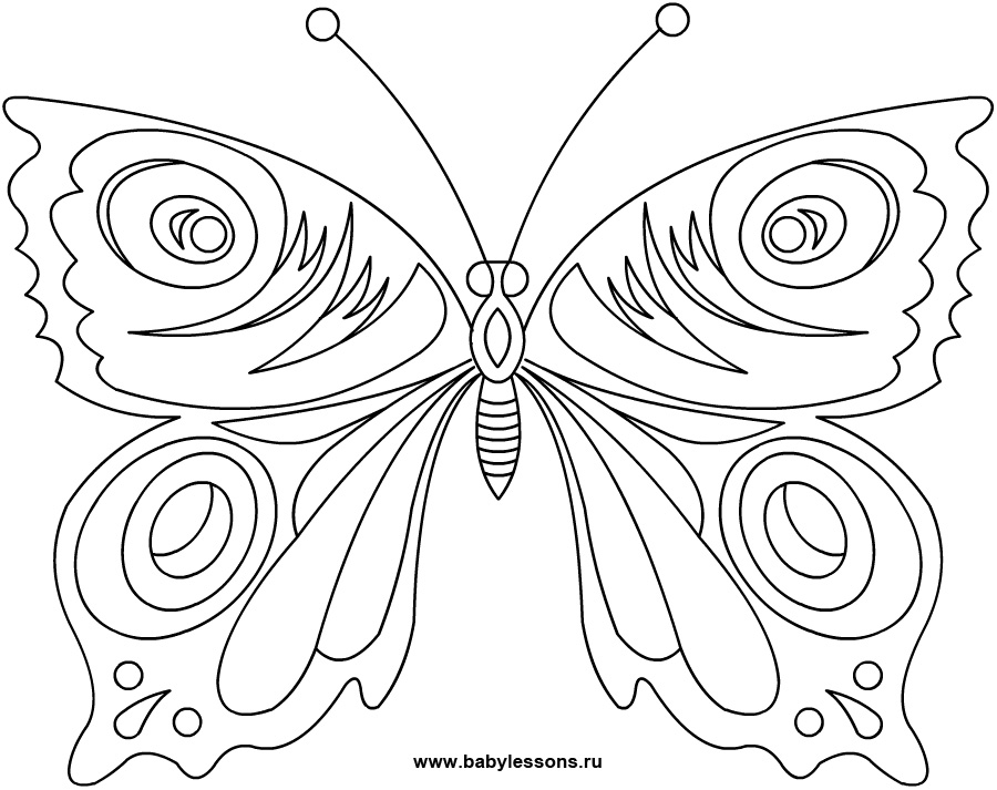 Раскраска крылья бабочек