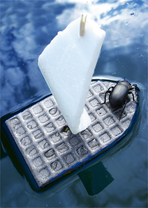 самодельные кораблики