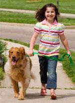 Обязанности по уходу за собакой
